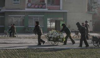 Coreia do Norte reduz distribuição de alimentos a 300 gramas diários, alerta ONU
